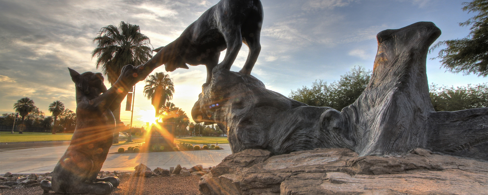 Statue of two wildcats touching paws on the University of Arizona campus