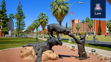 University of Arizona Wildcats Statue
