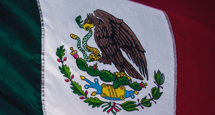 Close-up of Mexican flag